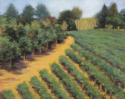 Painting - Napa Afternoon by Dena Cornett