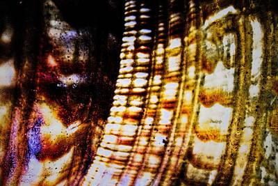 Natural Mosaicism Original by Sandra Pena de Ortiz