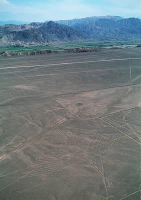 Condor Wall Art - Photograph - Nazca Lines by David Nunuk/science Photo Library