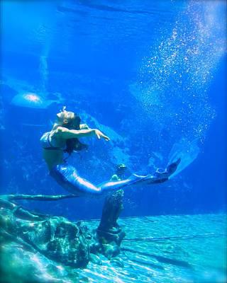 Photograph -  Mermaid Spring by Julie Komenda
