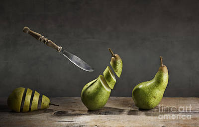 Still Life Photograph - No Escape by Nailia Schwarz