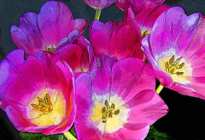 Photograph - October Tulips by Chuck Staley