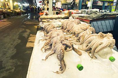 Octopus Sale In Korea Market Art Print by Tuimages