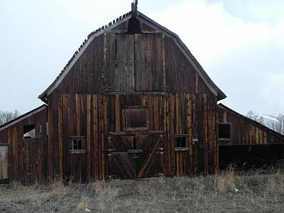 Photograph - Old Barn by Yvette Pichette