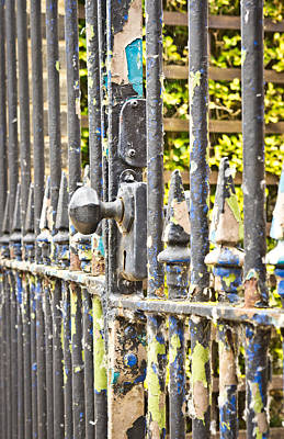 Antique Ironwork Photograph - Old Gate by Tom Gowanlock
