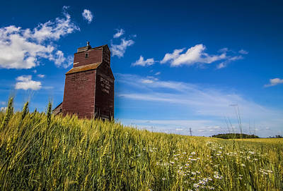 Photograph - Old Grain Elevator by Gerald Murray Photography
