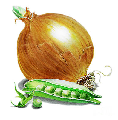 Pea Green Painting - Onion And Peas by Irina Sztukowski