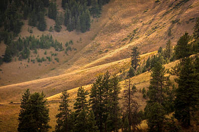 Photograph - Out In The Valley Montana  by Rich Franco