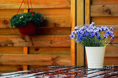 Trendy Photograph - Outdoor Design by Michal Bednarek