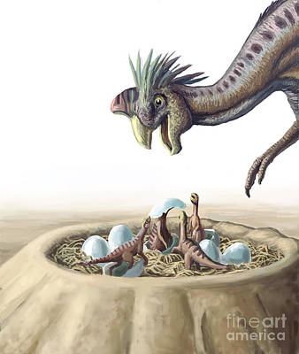 Photograph - Oviraptor And Nest by Spencer Sutton