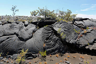 Hawai Photograph - Pahoehoe Lava by Michael Szoenyi