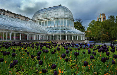 Garden Flowers Photograph - Palm House In The Botanic by Panoramic Images