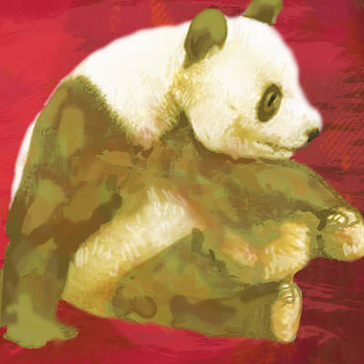 Red Panda Drawing - Panda - Stylised Drawing Art Poster by Kim Wang