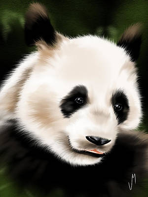 Panda Illustration Painting - Panda by Veronica Minozzi