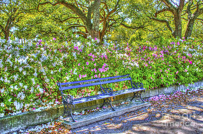 Photograph - Park Bench by Dale Powell