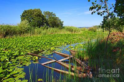 Canoe Photograph - Pateira Boats by Carlos Caetano