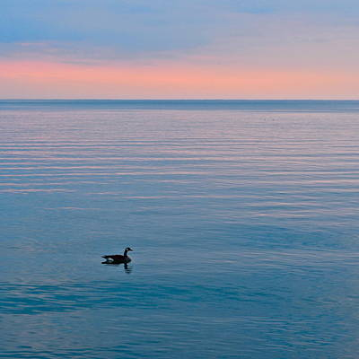 Loner Photograph - Peace And Tranquility by Frozen in Time Fine Art Photography