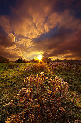 Fall Colors Photograph - Peace Of Mind by Phil Koch