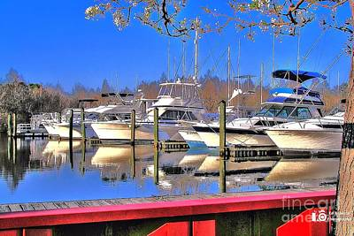 Print featuring the photograph Peaceful Marina by Ed Roberts