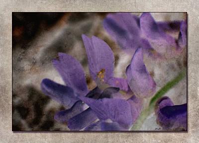 Photograph - Petals by WB Johnston