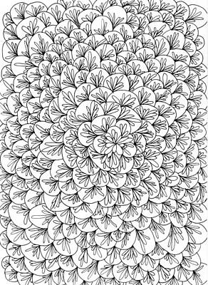 Drawing - Petals by Yvette Pichette