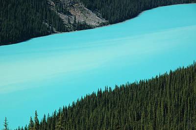 Aerial View Photograph - Peyto Lake. Banff National Park In Alberta. by Rob Huntley