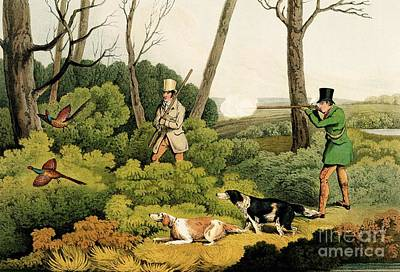 Pheasant Painting - Pheasant Shooting by Henry Thomas Alken