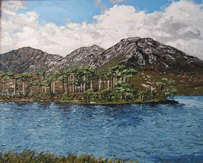 Pine Island Derryclare Lough Connemara Ireland Art Print by Diana Shephard
