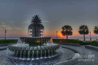 Photograph - Pineapple Sunrise by Dale Powell
