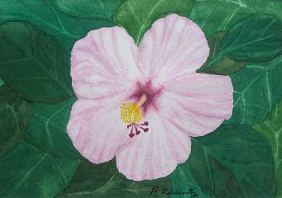 Pink Hibiscus Art Print by Patty Dopkin