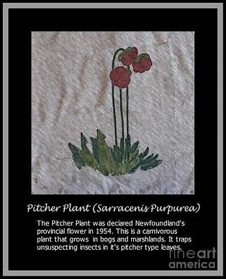 Pitcher Plant Art Print by Barbara Griffin