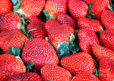 Photograph - Plant City Strawberries by Carol Groenen