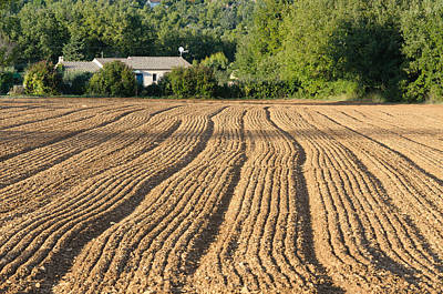 Plowed Field In Provence Art Print