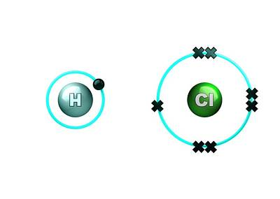 Atom Photograph - Polar Bond In Hydrogen Chloride Molecule by Animate4.com/science Photo Libary