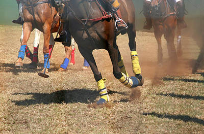 Photograph - Polo Ponies In Action by John Orsbun