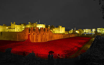 Poppies Tower Of London Night   Art Print