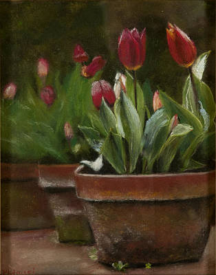 Pastel - Potted Tulips by Cindy Plutnicki