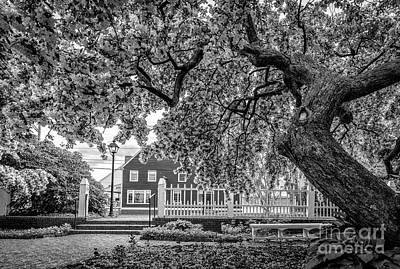 Prescott Photograph - Prescott Park by Scott Thorp