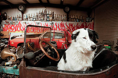 Antique Automobiles Photograph - Prewitt, New Mexico, United States by Julien Mcroberts