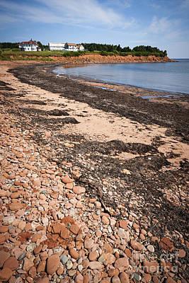 Moody Trees - Prince Edward Island coastline 5 by Elena Elisseeva