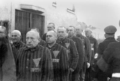 National Socialism Photograph - Prisoners In The Concentration Camp by Everett