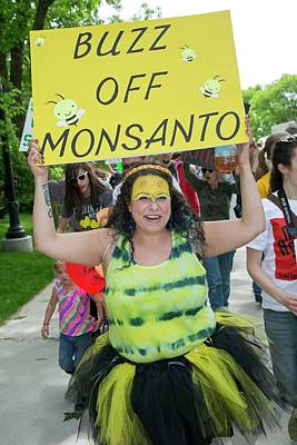 Regulations Photograph - Protest Against Gm Crops by Jim West