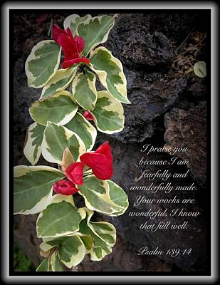 Photograph - Psalm 139 14 by Scripture Pictures