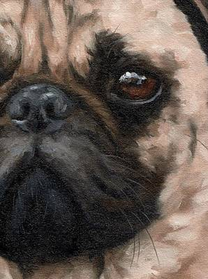 Painting - Pug Portrait Painting by Rachel Stribbling