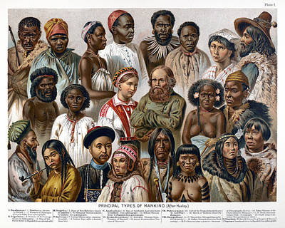 Photograph - Racial Types, 19th Century by Granger