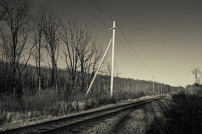 Bare Trees Photograph - Railroad Track Passing by Panoramic Images