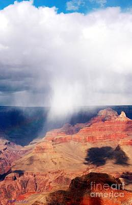 Kathleen Photograph - Raining In The Canyon by Kathleen Struckle