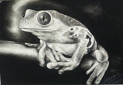 Dallas Drawing - Rana by Joaquin Hernandez