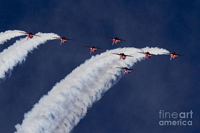 Abstract Animalia - Red Arrows by Airpower Art