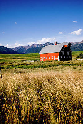 Northeastern Photograph - Red Barn In Field Near Joseph, Wallowa by Nik Wheeler